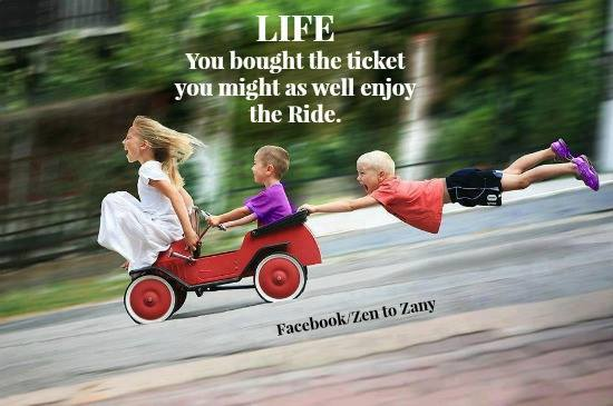 life enjoy the ride for dont crack me up