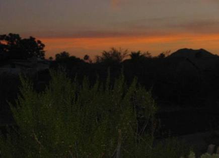 beautfy of the desert sunset