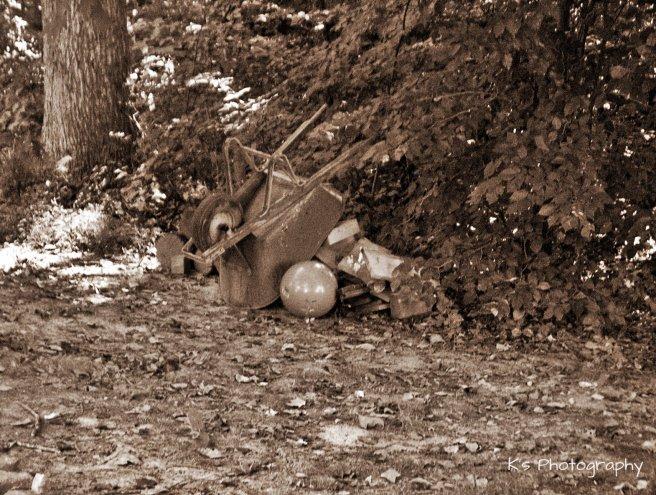img_6026bw-wheelbarrow-isolated-for-cees