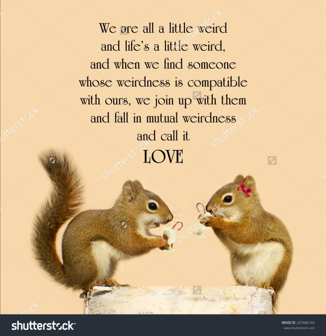 stock-photo-inspirational-quote-on-love-by-dr-suess-with-a-cute-pair-of-squirrels-in-love-enjoying-some-207686164