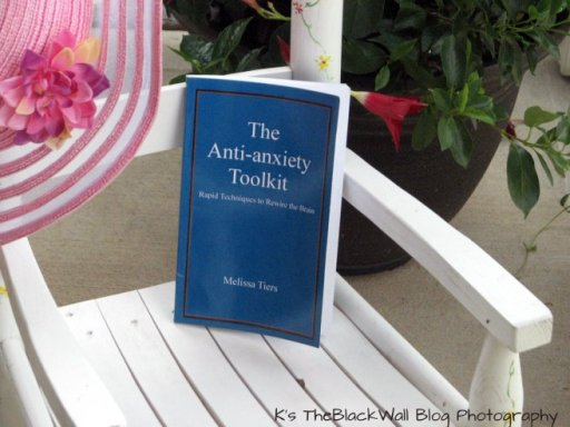 anti anxiety tool kit book picture